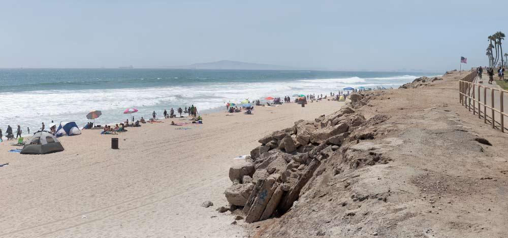 Dog friendly beaches in orange county, laguna beach, huntington beach, dana point, newport beach